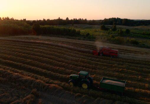 Dlaczego warto kupować żywność bezpośrednio u rolnika?